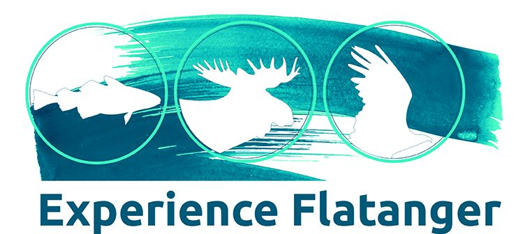 Experience Flatanger